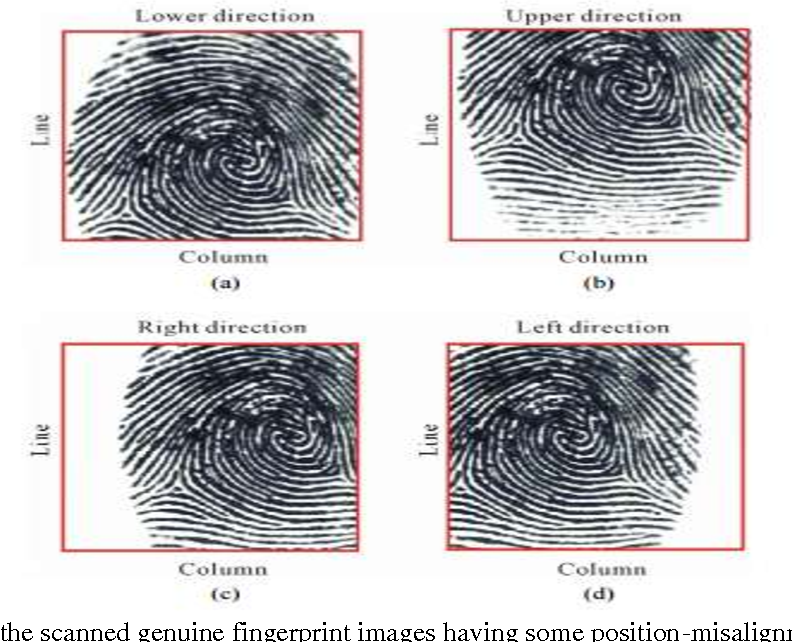 Figure 10 from An Efficient Biometric Multimodal Fingerprint