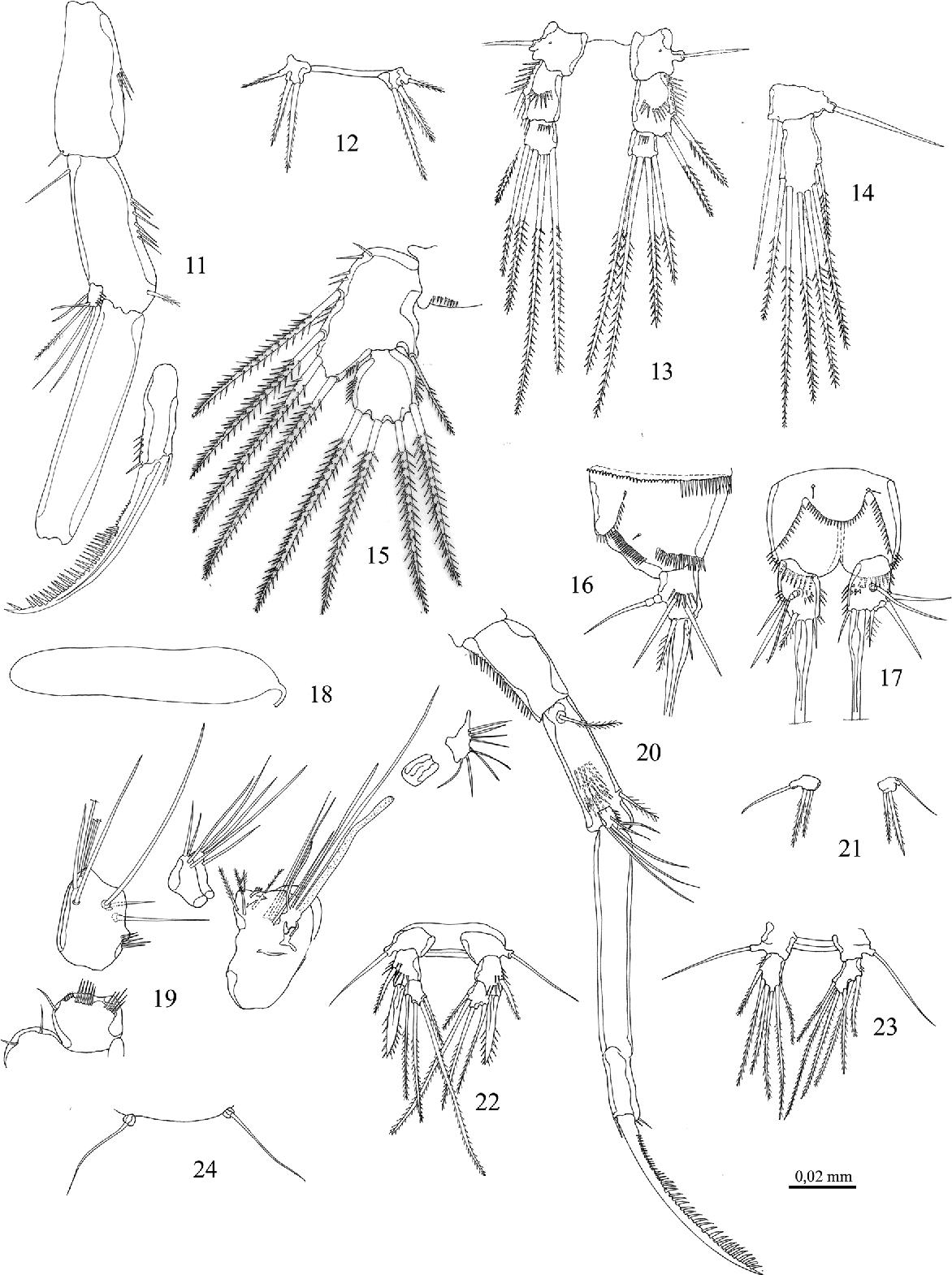 figure 11-24