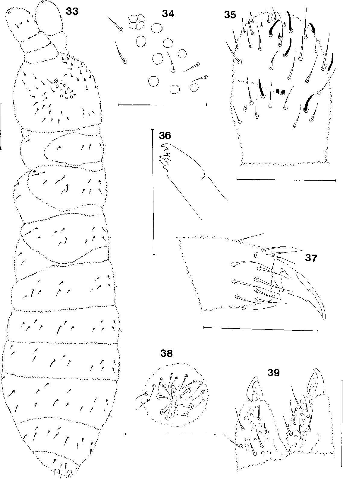 figure 33-39