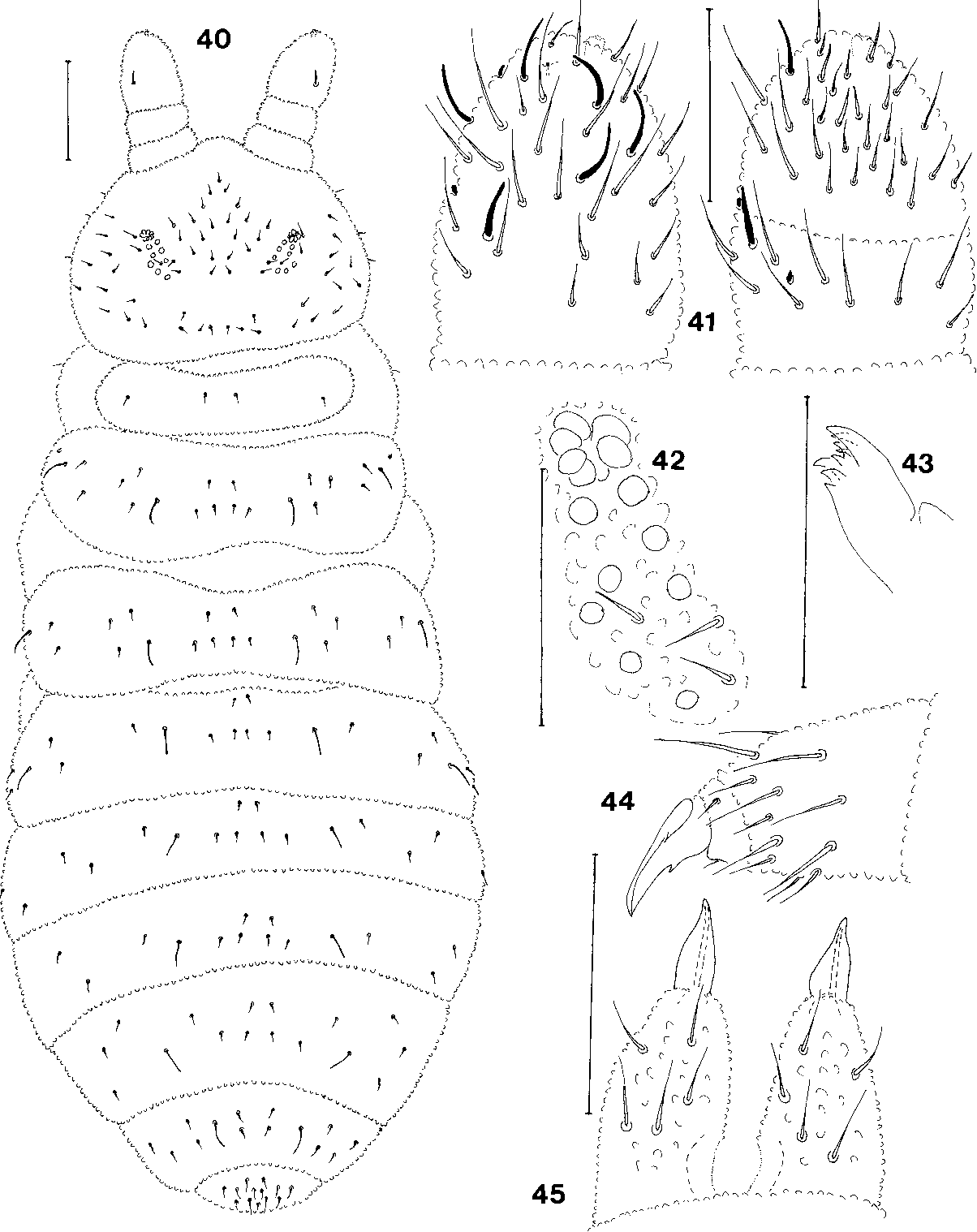 figure 40-51