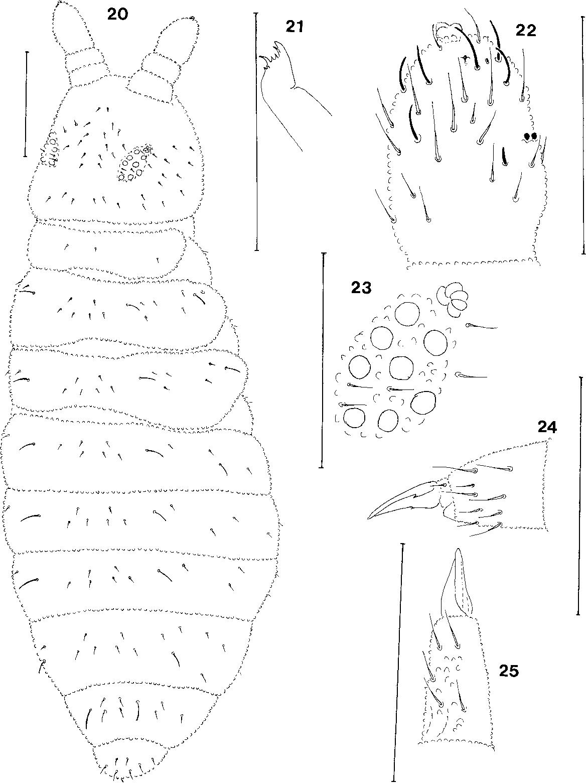 figure 20-25