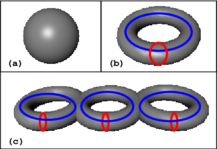 Figure 1 from Fast methods for computing isosurface topology