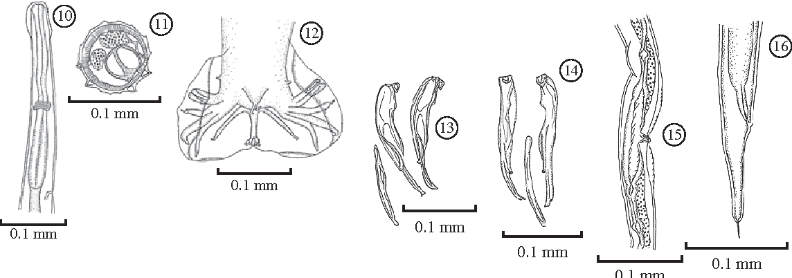 figure 10-16
