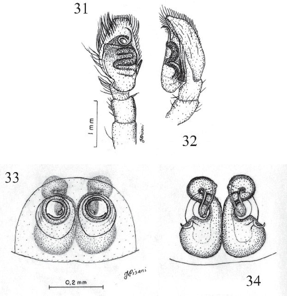figure 31-34