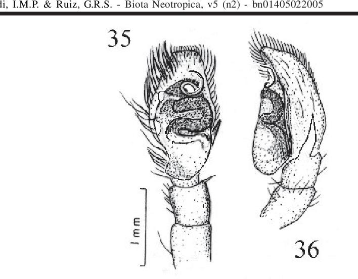 figure 35-36