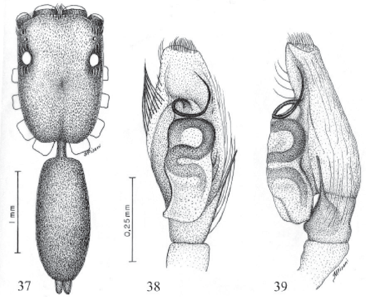 figure 37-39