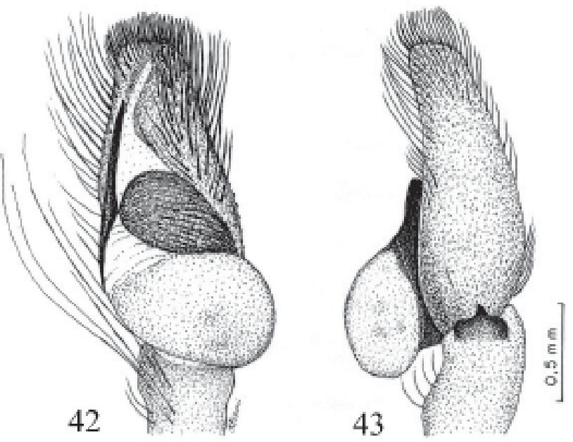 figure 40-41