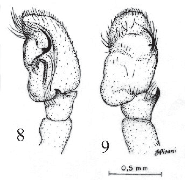 figure 8-9