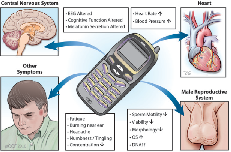 how to avoid radiation from cell phones