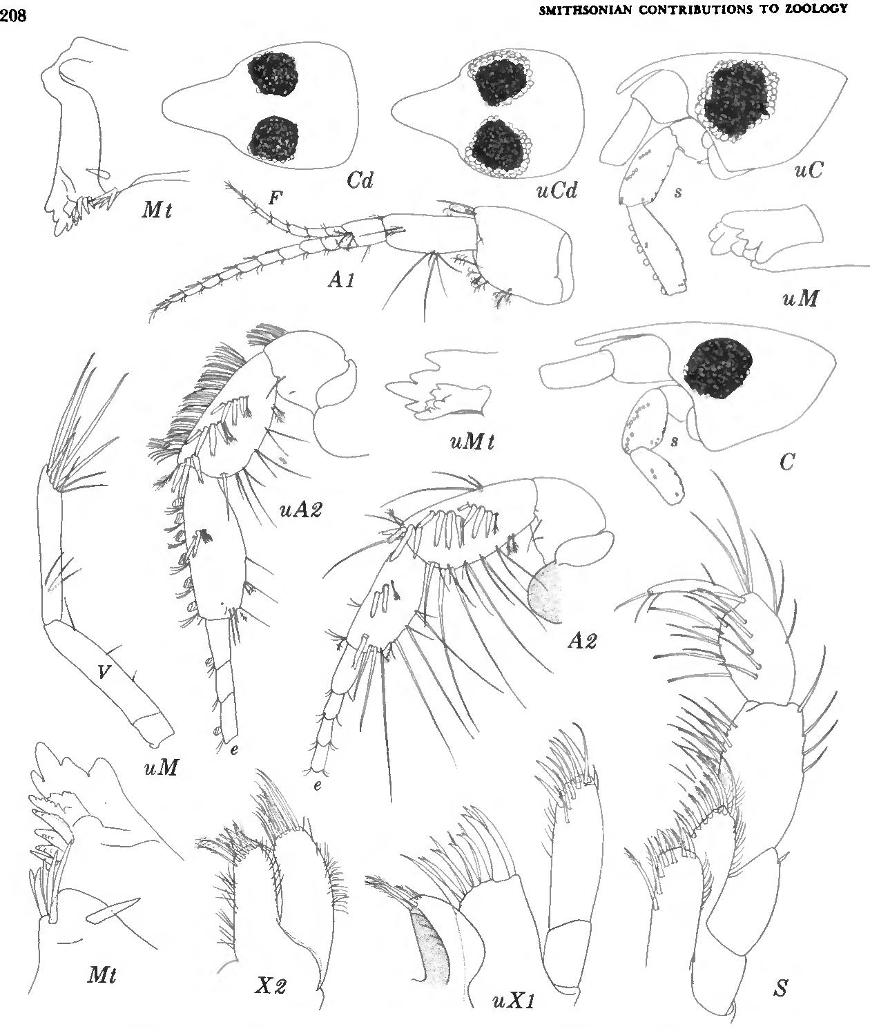 figure 88