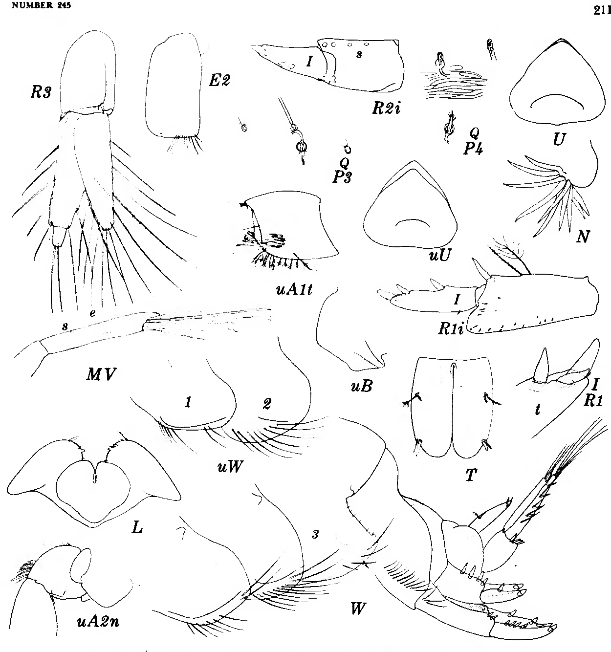 figure 90