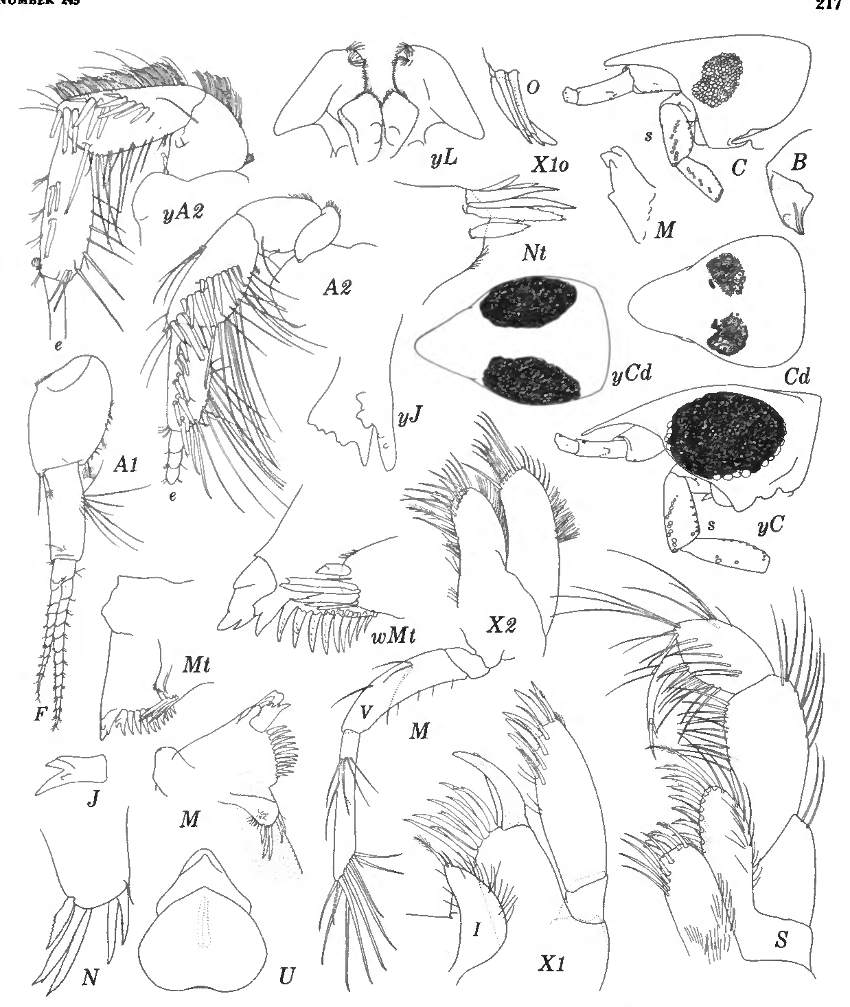 figure 93