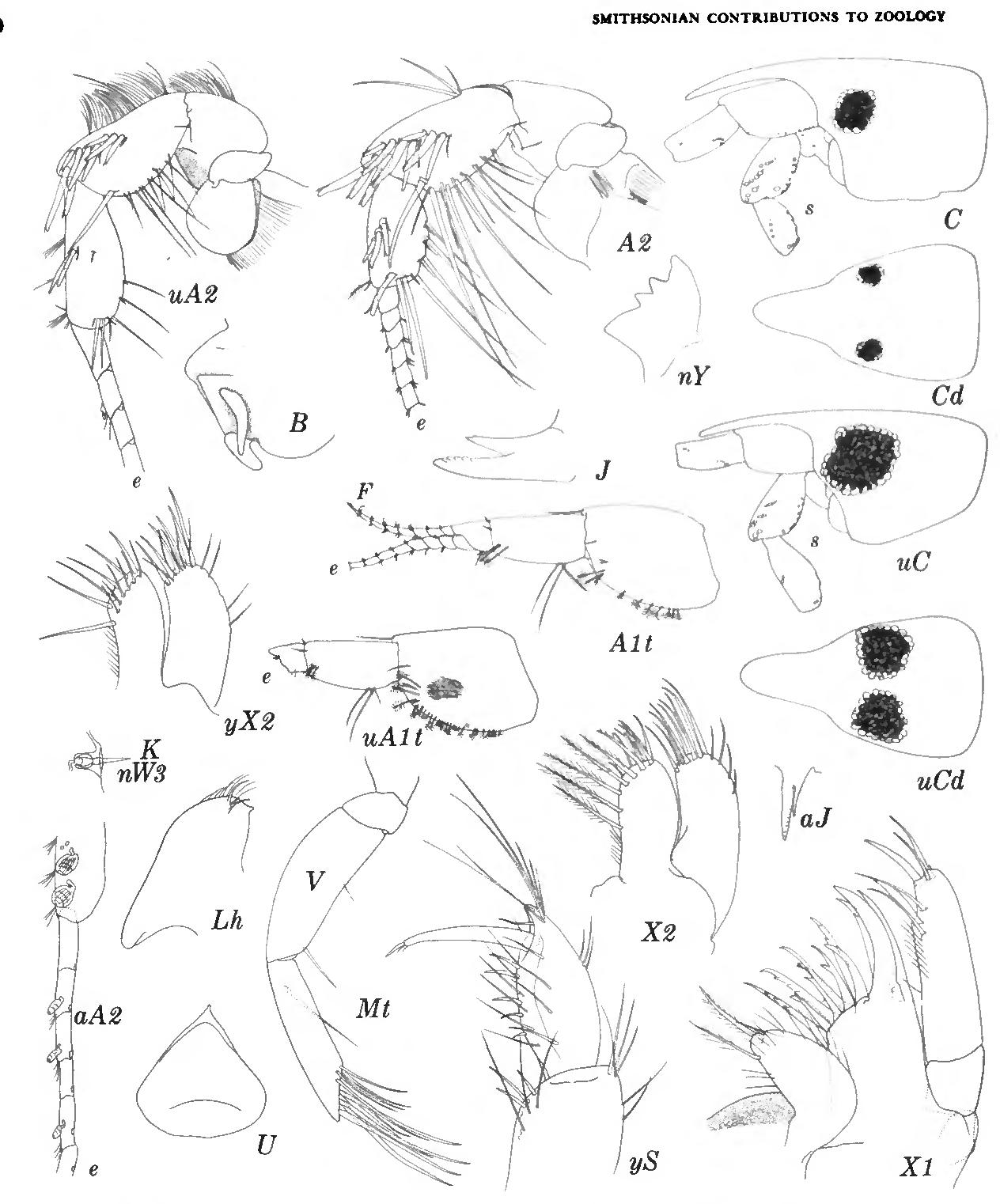 figure 144