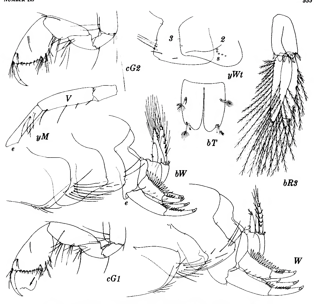 figure 163