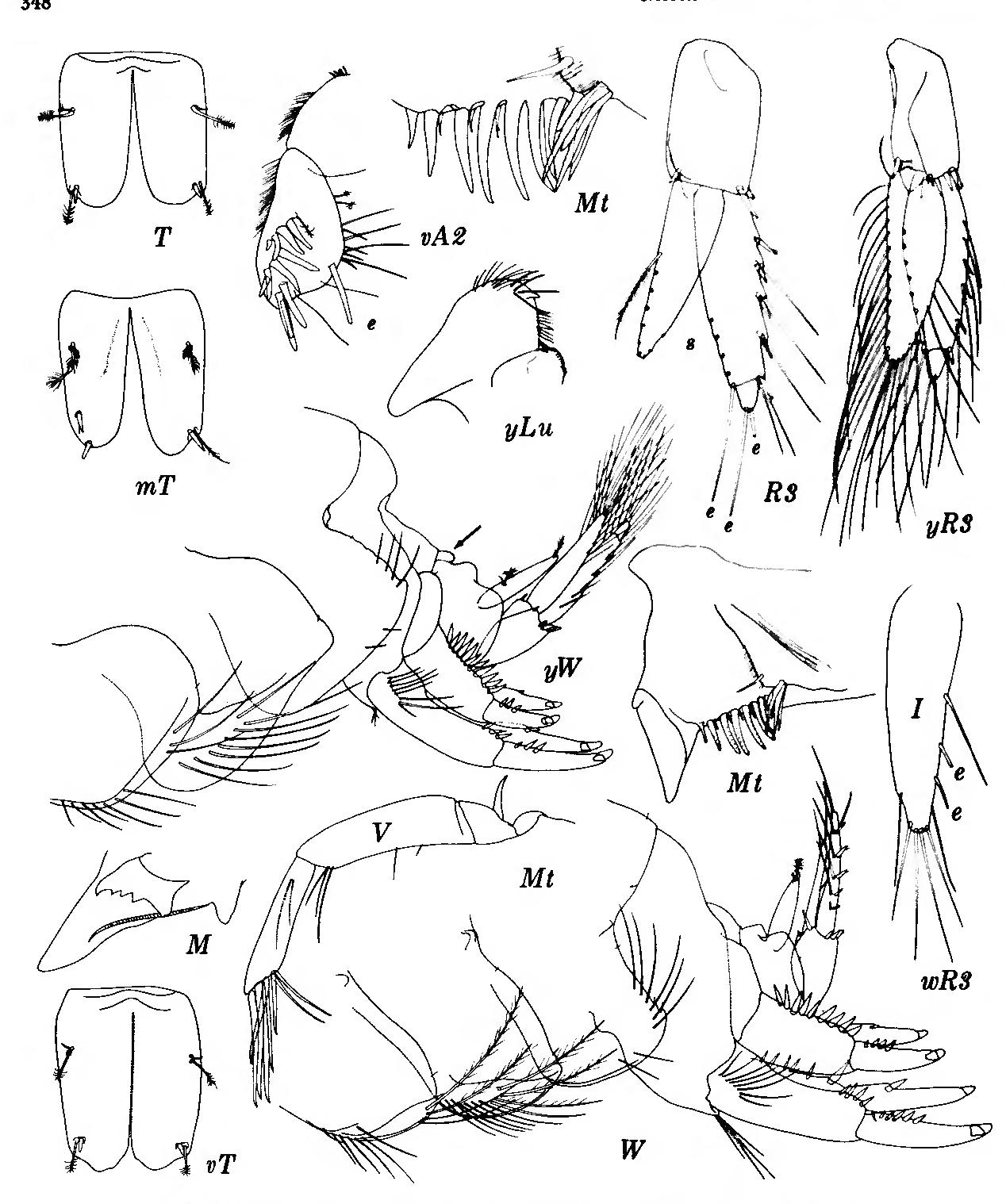 figure 173