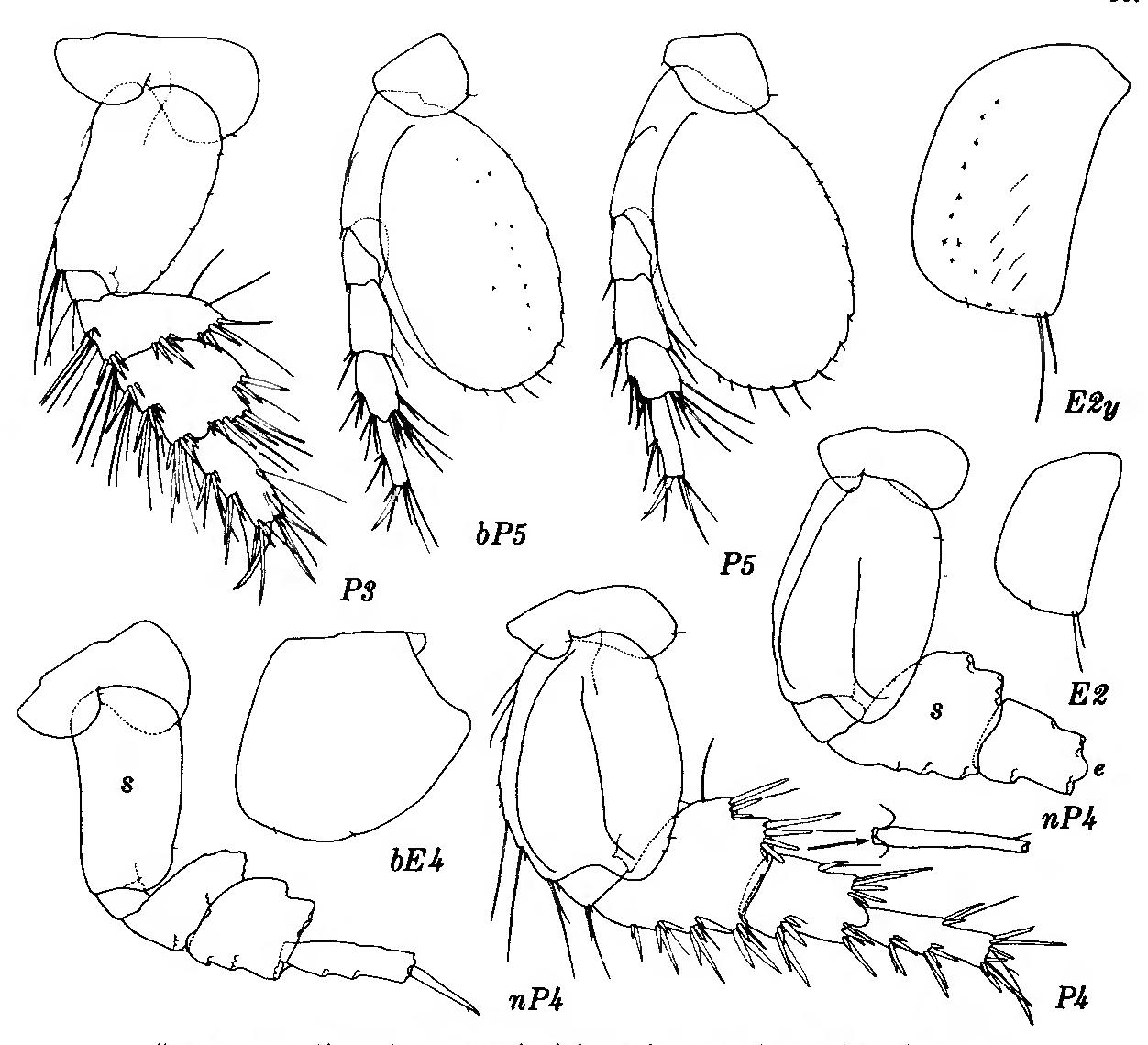 figure 185