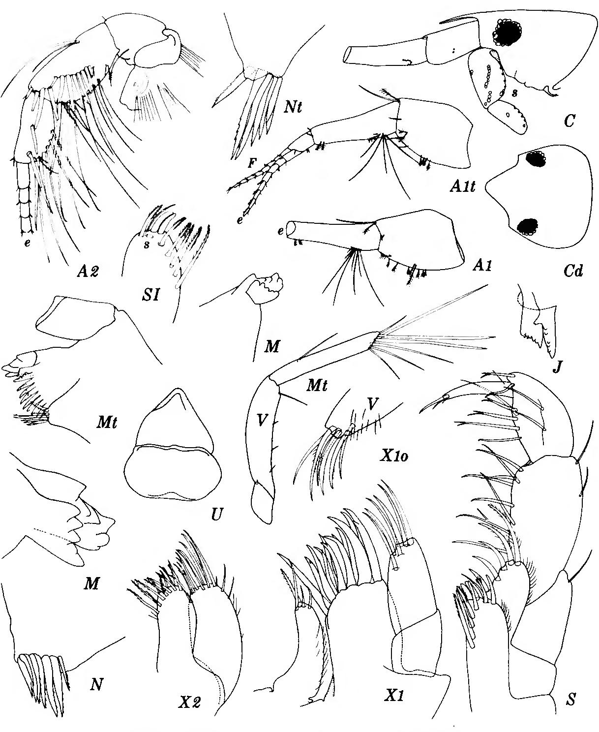 figure 206