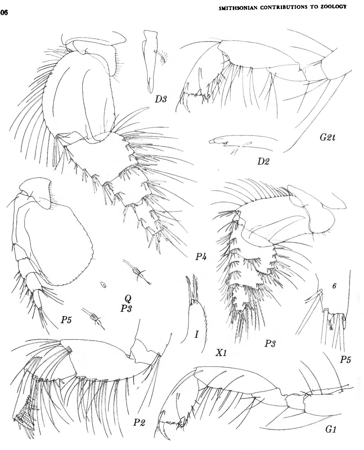 figure 207