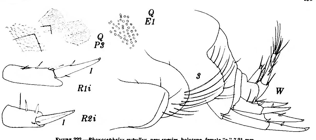 figure 222
