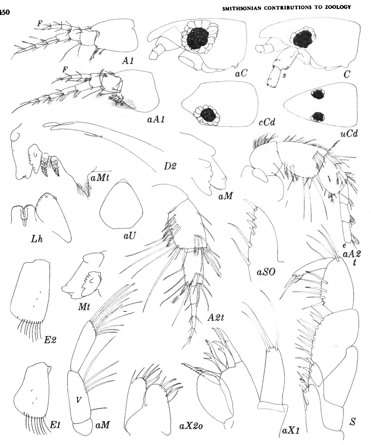 figure 228