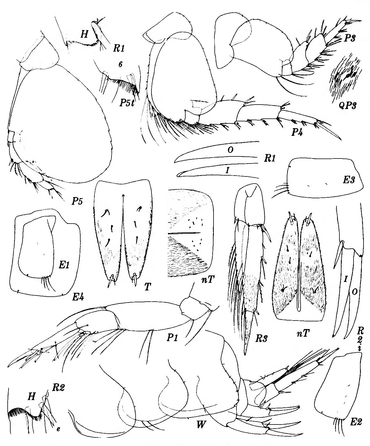 figure 233