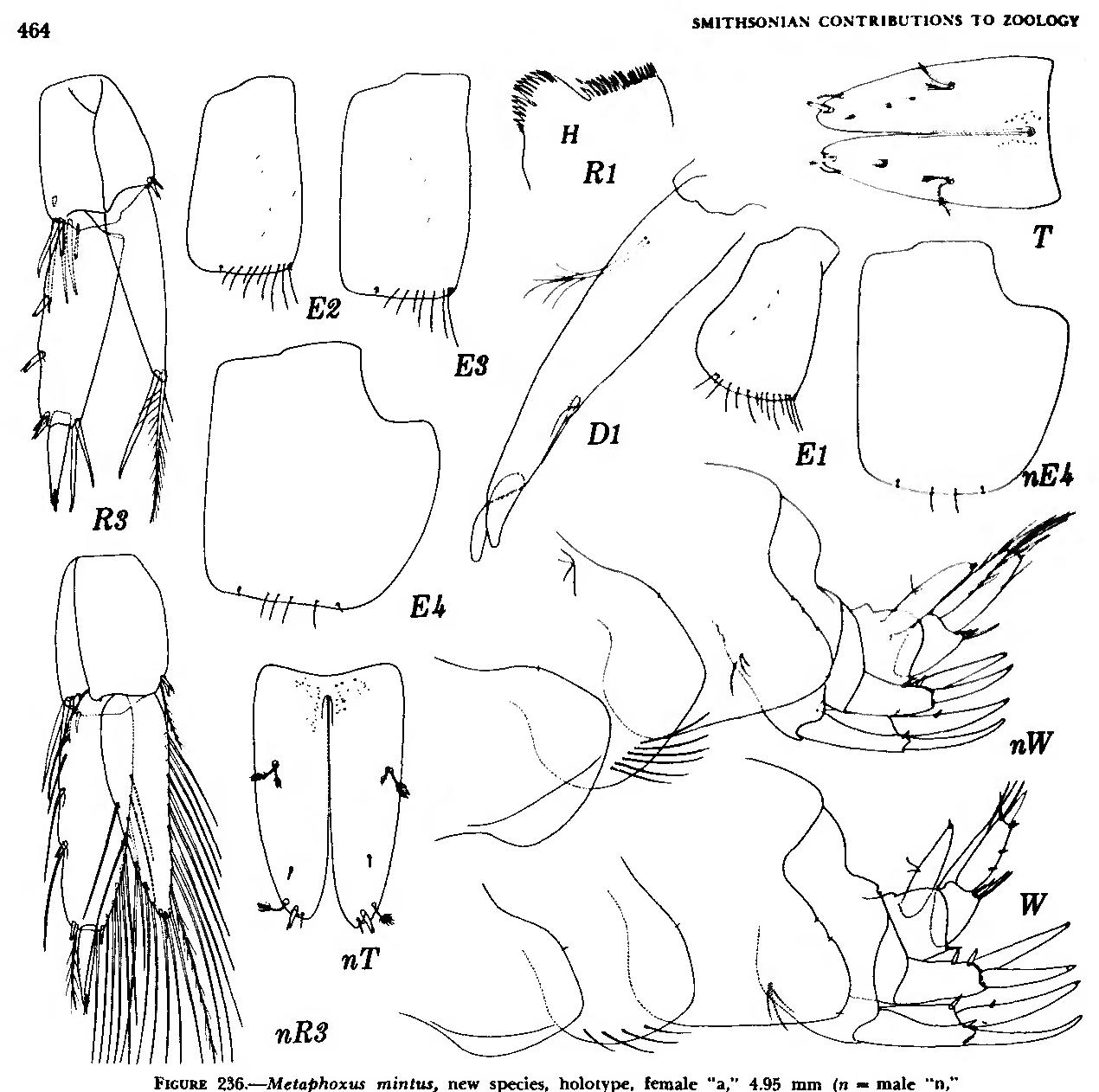 figure 236