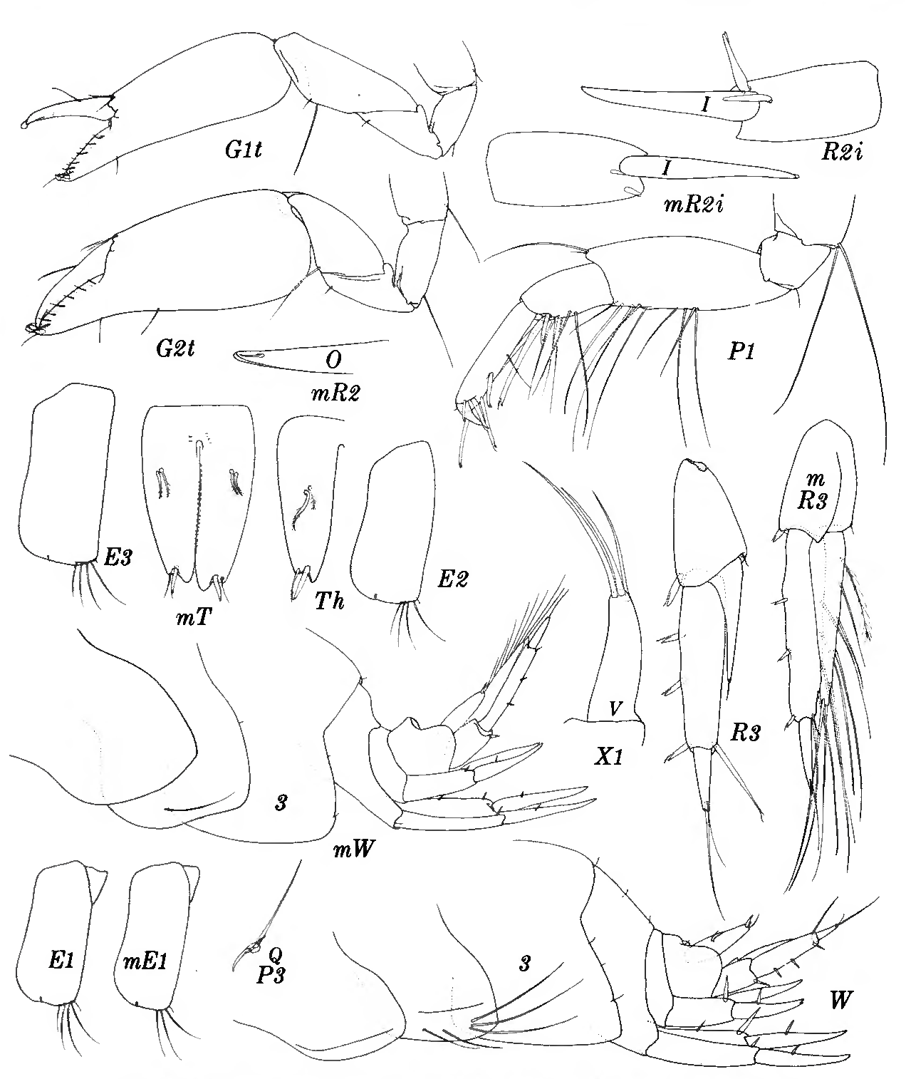 figure 249