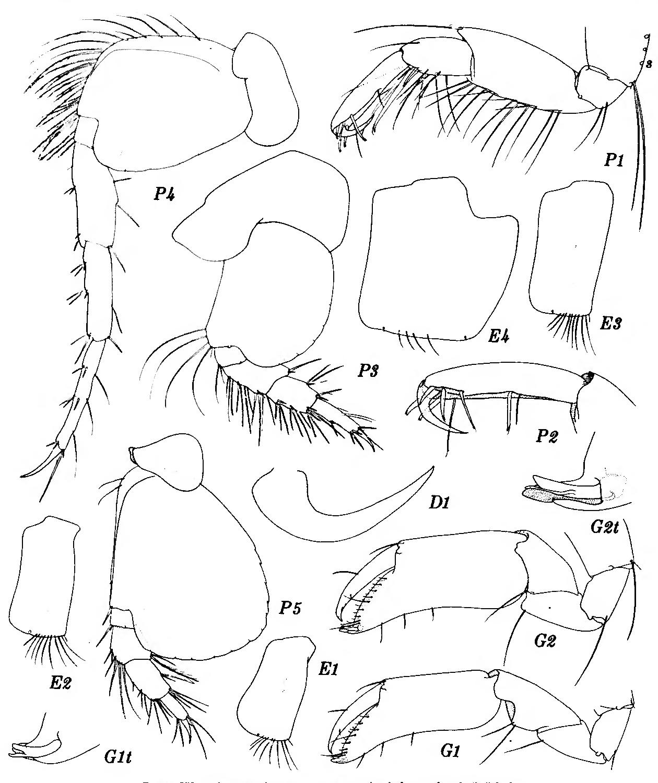 figure 251