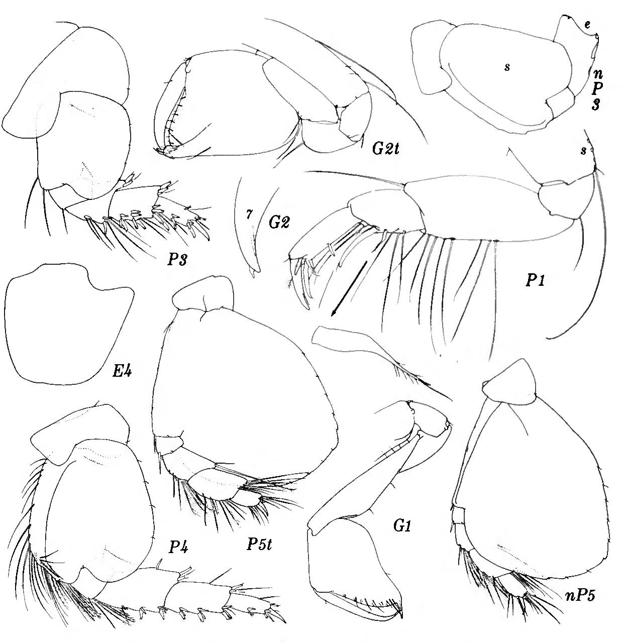 figure 256