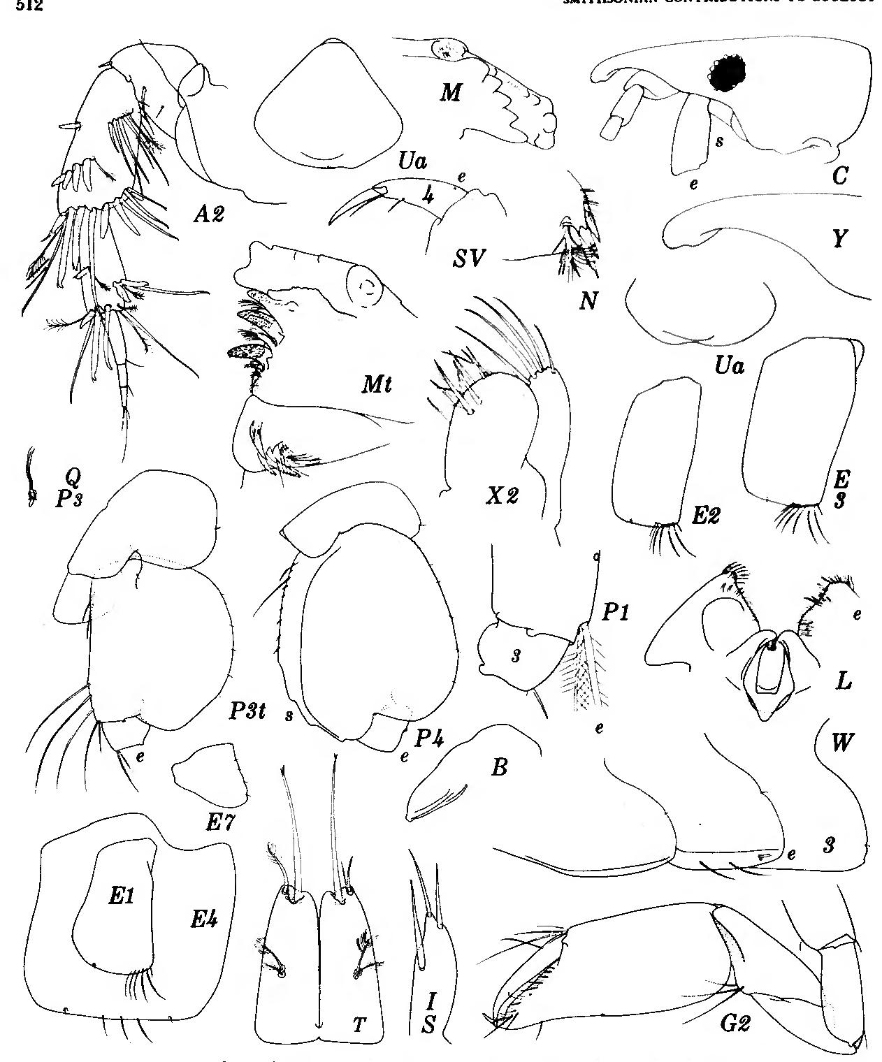figure 261