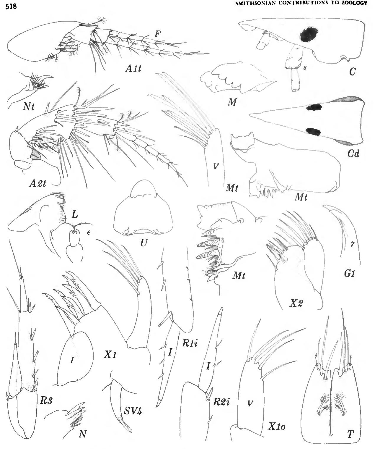 figure 264