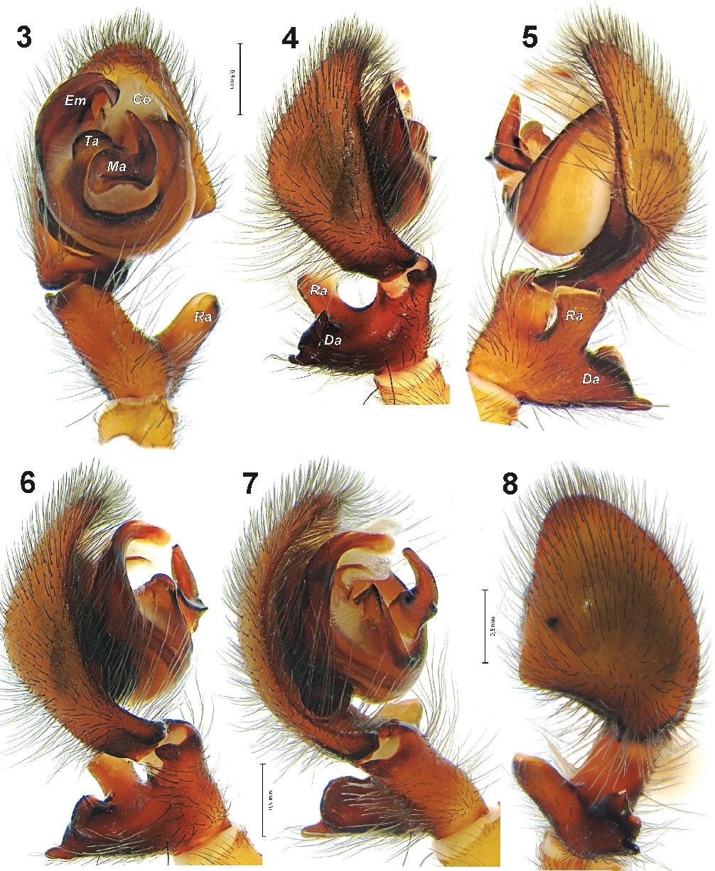 figure 3–8