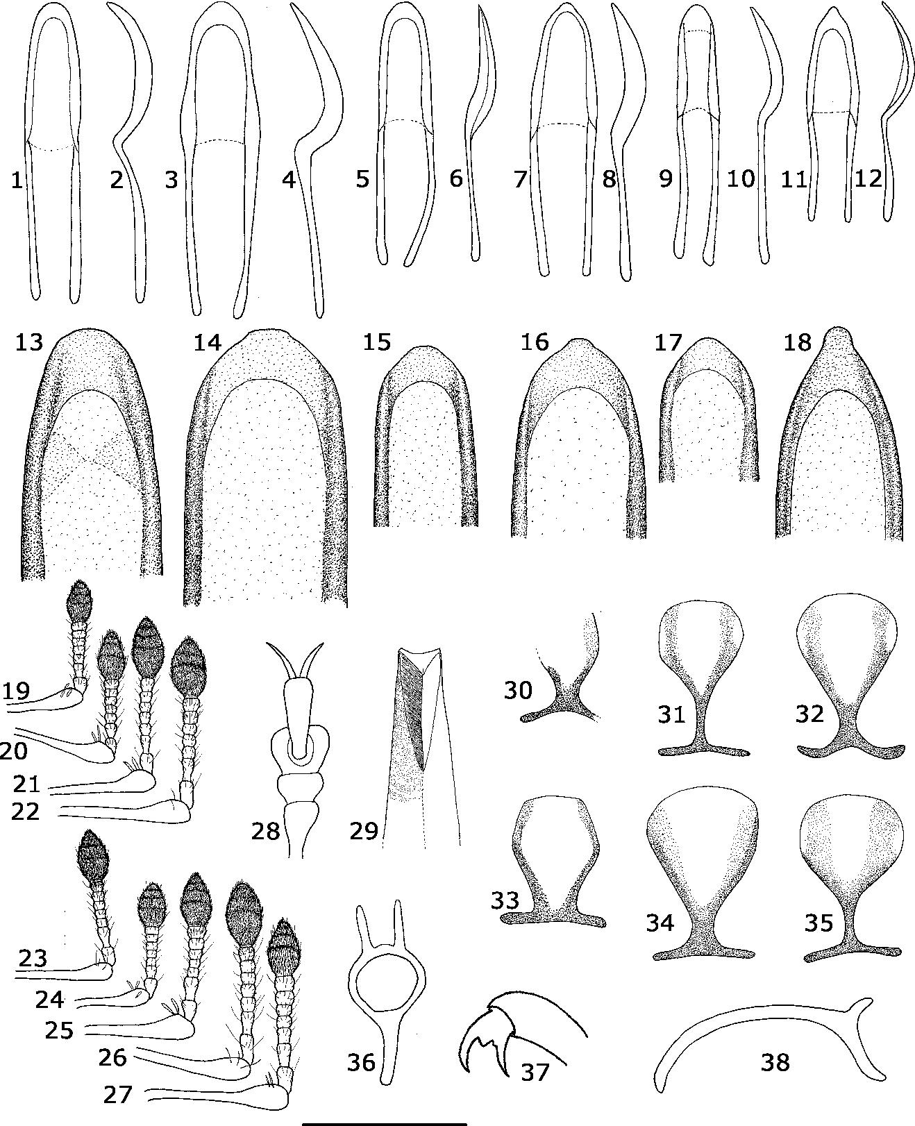 figure 1–38