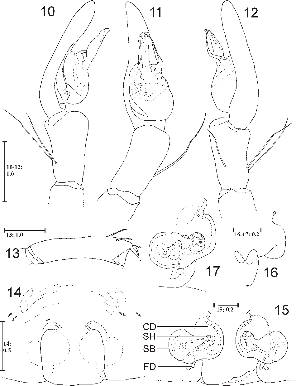 figure 10-17