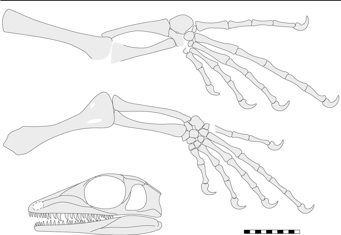 figure 29