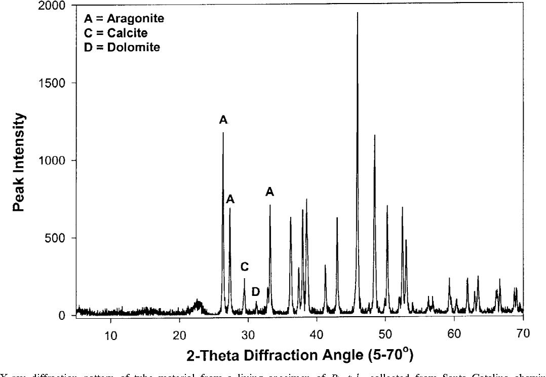 Radiocarbon dating metal