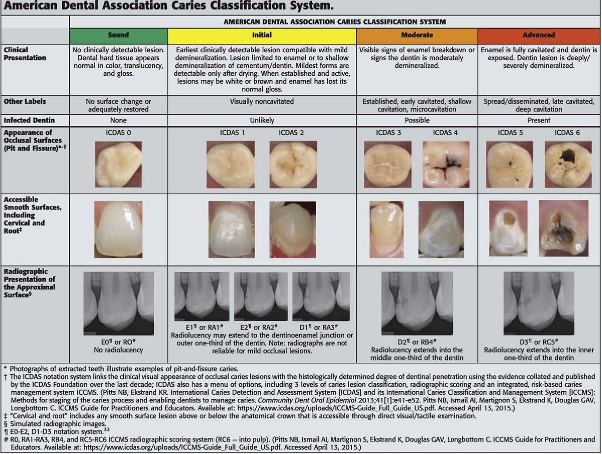 Figure 2 from Dental Caries: An Update on Dental Trends and