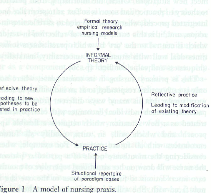 Closing the theory—practice gap: a model of nursing praxis