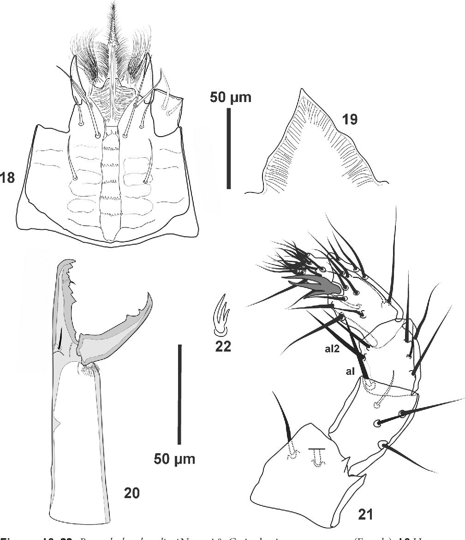 figure 18–22