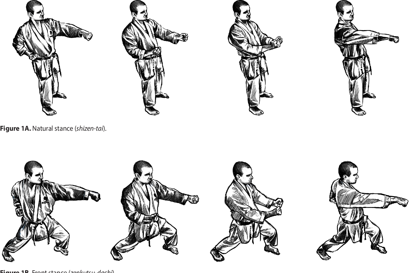 Influence Of The Stances In The Straight Punch S Impact Force In Karate Semantic Scholar
