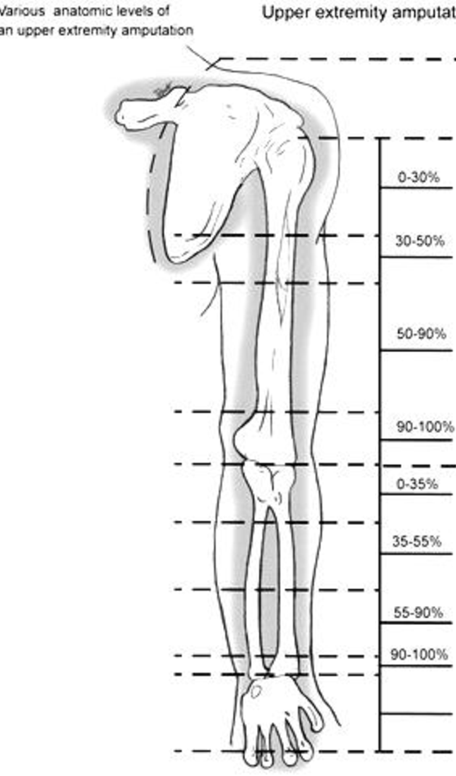 Figure 1 from Automation of Prosthetic Upper Limbs for