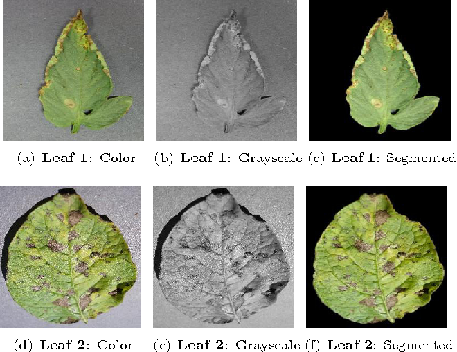 Figure 2 from Inference of Plant Diseases from Leaf Images