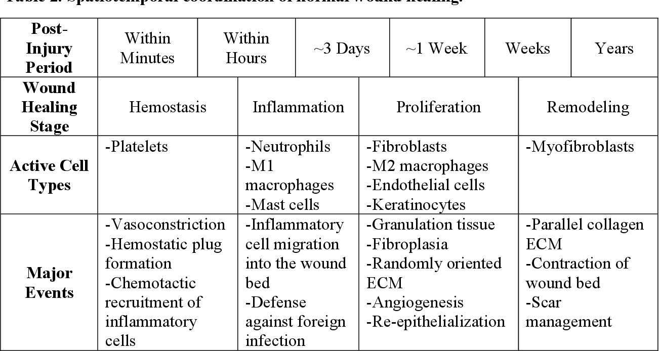Scaffold Design Considerations For Soft Tissue Regeneration Semantic Scholar
