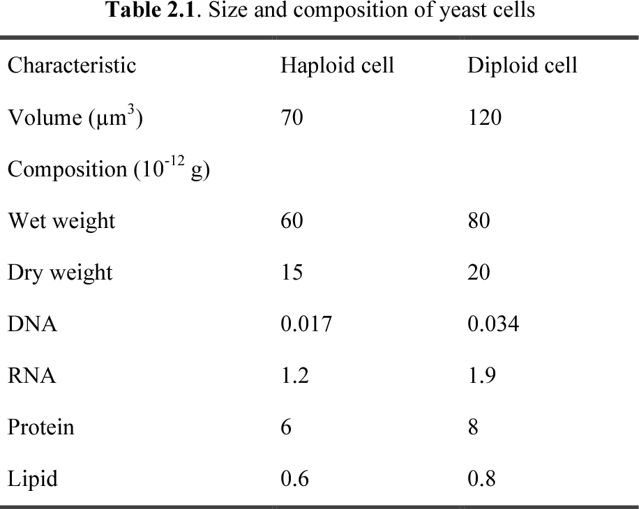 PDF] Genetics, Molecular and Cell Biology of Yeast