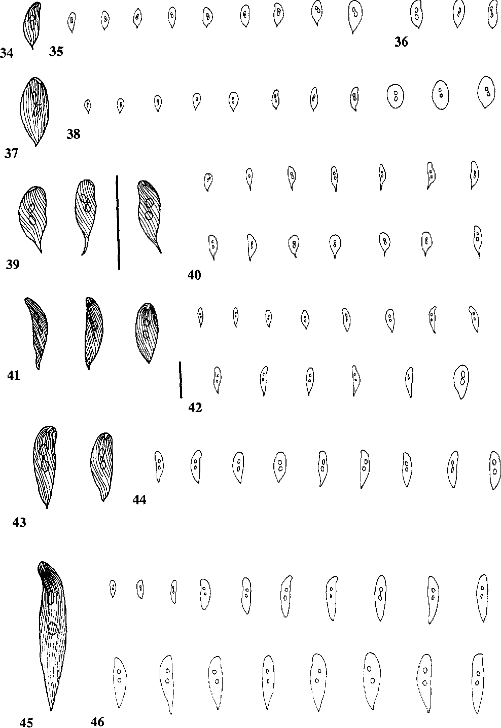 figure 34-46