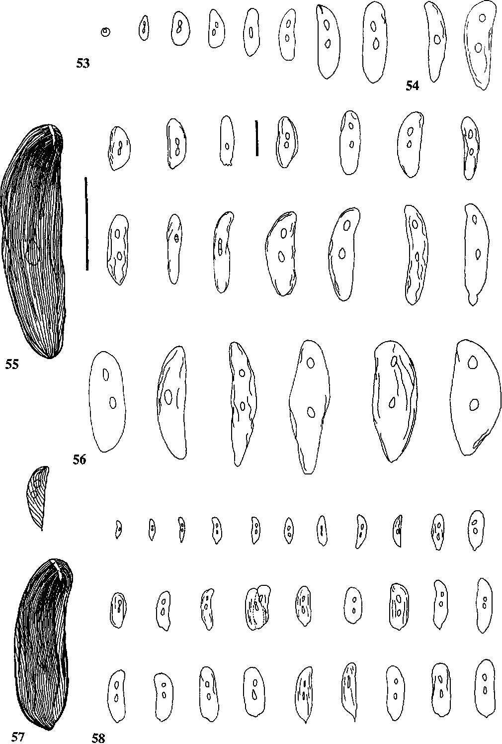 figure 53-58