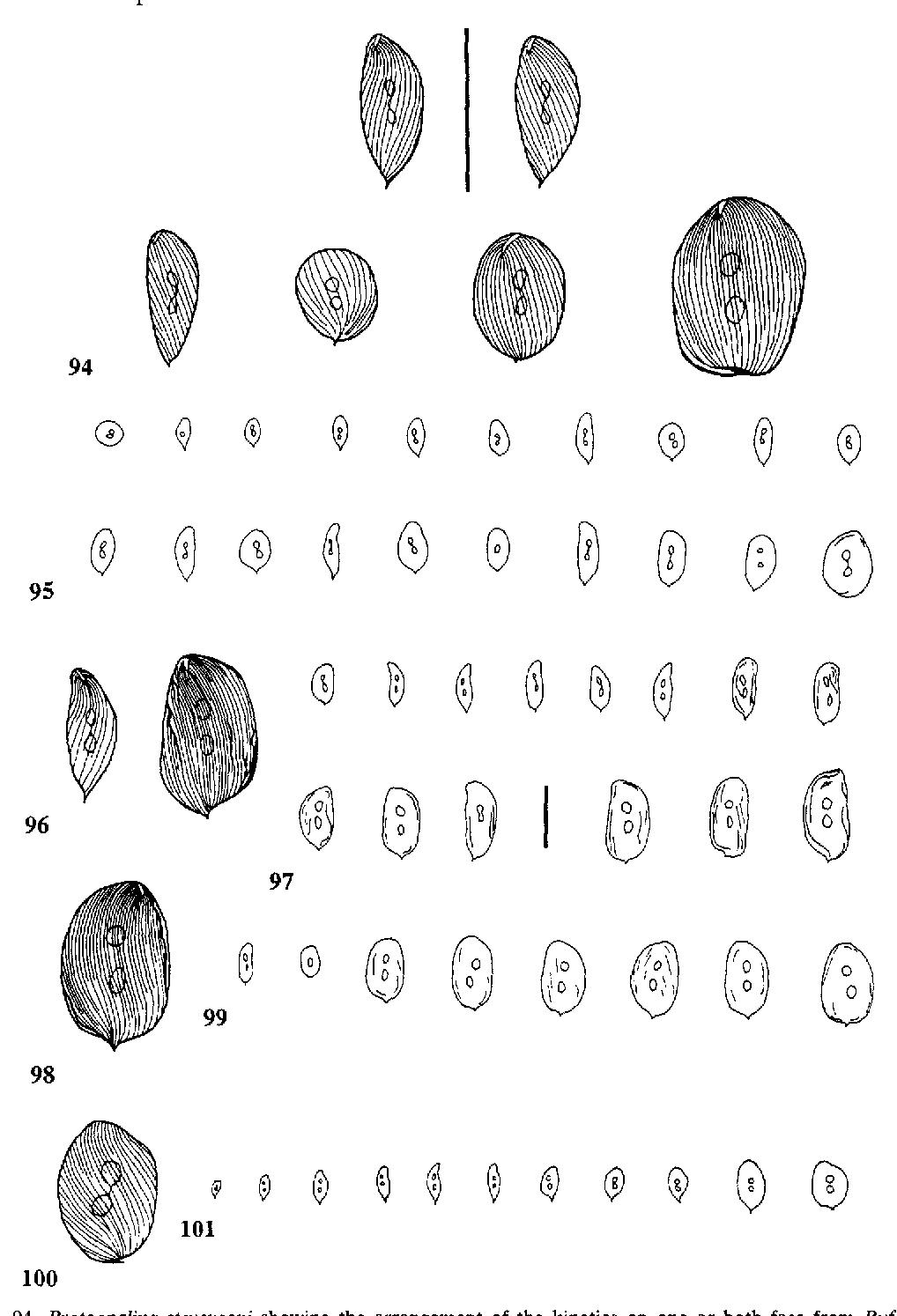 figure 94-101