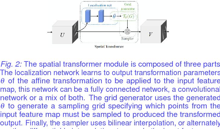 PDF] Effects of Spatial Transformer Location on Segmentation