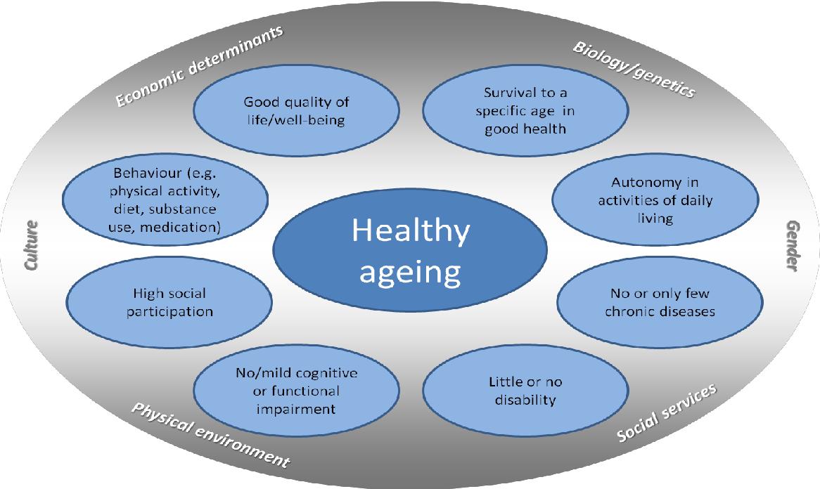PDF] Indicators for Healthy Ageing — A Debate | Semantic Scholar