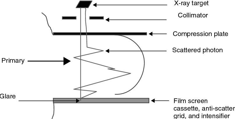 figure 41.2